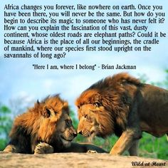 Africa quote. Don't understand the second part of the big paragraph, but the first part is cool. More