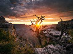 Grand Canyon National Park, Arizona - Hark Lee