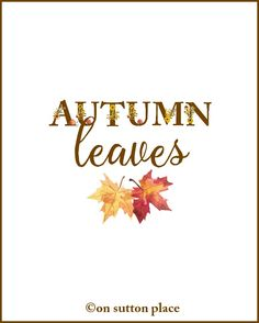 Autumn Leaves Fall Floral Alphabet Printables