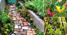 9 consejos para hacer que tu jardín sea sustentable
