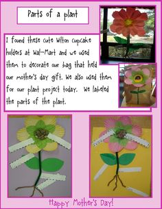 Golden Gang Kindergarten: Parts of a Plant and Mothers Day bag
