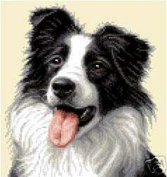 1000 Images About Animals Cross Stitch On Pinterest