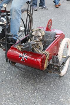 "Too awesome. ""Local Toronto artist MadDog with Yoda, his machine-gun toting Pug, in a Red Baron custom-built sidecar"" Makes me miss my two pugs Funny Dogs, Cute Dogs, Funny Animals, Cute Animals, Amor Pug, Photo Chat, Harley, Pug Love, Rat Rods"