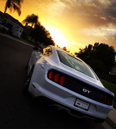 V8 CapucheDodge Ram CHEVY Viper CHARGER CHALLENGER Mustangm1
