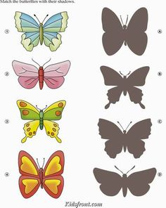 Kids Activity -Match the shadow of butterfly, Black & white Picture