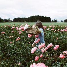 picking peonies | kinfolk magazine @Kinfolk Farm Magazine (kinfolk.com)
