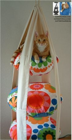 FRUGAL TIP: Make Your Own Cat Trapeze   This looks like a fun Do-it-Yourself project! I searched for a tutorial but was unable to find one. But it shouldn't be too hard to figure out.
