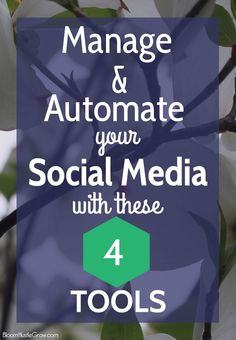 Tools To Automate Social Media: Use These 4 Tools To Rock Your Social Media Strategy. See how I use Tailwind, Buffer, Trello & Later to make my social media strategy so much easier to manage.