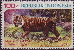 Indonesia 1977 - Panthera tigris