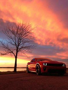 . My Dream Car, Dream Cars, Sports Scores, Gm Car, In God We Trust, Car Wheels, Muscle Cars, Automobile, Jeeps