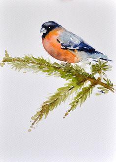 6 x 8 pouces d'oiseau Bouvreuil aquarelle originale, l'hiver