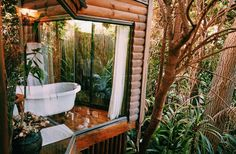 Romantic getaway at the Greyton tree house (Cape Town, Western Cape, South Africa) / My Life in Pink Natural Spring Water, Romantic Getaways, Stunning View, Clawfoot Bathtub, Rock Climbing, Dream Vacations, South Africa, Places To Visit, Adventure