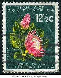 South African Protea Stamp