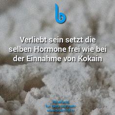 #bluefacts #fakten #facts #weisheit #zitat #deutsch #deutschland #quote #liebe #love