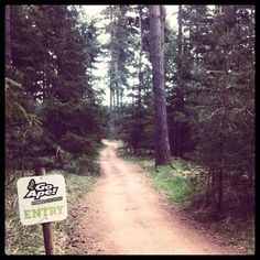 Your Forest Segway Adventure starts here! #goape #goapetribe #segway #forestsegway #segs #allterrain #tracks #adventure #fun #twowheels #woods #forest #explore #thetford #thetfordforest #suffolk
