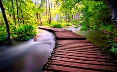 wooden-bridge-293958.jpg (1920×1200)