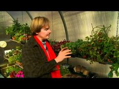 Growing in a Greenhouse: P. Allen Smith Hands-On Gardening Classics