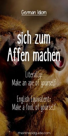 27 Hilarious Everyday German Idioms and Expressions - Ideen finanzieren German English, Learn English, English Lessons, French Lessons, Spanish Lessons, Learn French, German Grammar, German Words, German Language Learning