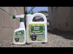 Simple Green® Outdoor Odor Eliminator – People & pet friendly non–toxic formula eliminates pet odors in outdoor spaces! Dog Pee Smell, Skunk Smell, Skunk Spray Remedy, Getting Rid Of Skunks, Pet Odor Remover, Urine Smells, Artificial Turf, Odor Eliminator, Pet Odors