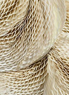 Tara Donovan is an American artist who lives and works in Brooklyn, New York. She is known for installation art that utilizes everyday materials such as rolls of tape, pieces of pencil, Styrofoam cups, paper plates, napkins.