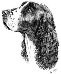 Gundogs Stud Receipts [SRGD] - £12.99 : The Dog Print People, Canine Stationery