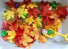 Tot School Theme: Autumn Sensory Bin - MommaAMommaB Apple Life Cycle, School Themes, School Ideas, Gail Gibbons, Folder Games, Community Helpers, Tot School, Sensory Bins, Autumn Theme