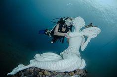 striking living sculptures under Bali and Lombok sea