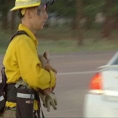 Firefighter rescues baby deer from Black Forest Fire