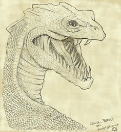 """This is a Sketch of the Basilisk in the Chambers of Secrets (Harry Potter). I drew this for a small Contest of a Harry Potter Community named """"Zauberhog. Harry Potter Sketch, Harry Potter Drawings, Harry Potter Fan Art, Basilisk Harry Potter, Realistic Dragon Drawing, Weird Drawings, Art Drawings, Creepy Cat, Fantasy Beasts"""