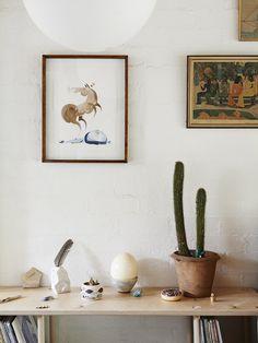 The teeny tiny Melbourne home - Alex Kennedy.