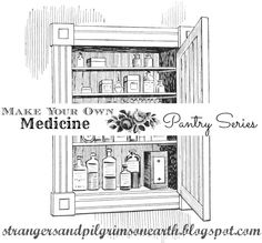 Strangers & Pilgrims on Earth: Make Your Own Cold Fighting Medicine ~ Pantry Series