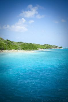Tobago Cays - St Vincent & The Grenadines #Caribbean