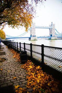 Autumn, The Thames, London, England ,blessed Autumn