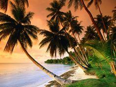 imagenes de atardeceres en la playa - Buscar con Google