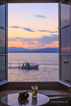 swimming through the golden light of Greek sunset