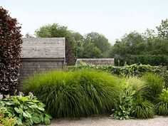 Instead of the usual prim suspects—boxwood, privet, holly—garden designer Sean Conway  composed this hedge with tall, breezy grasses. A seven-foot-tall maiden grass (Miscanthus sinensis 'Gracillimus'), along with several smaller stands of dwarf fountain grass.  Via Country Living magazine.