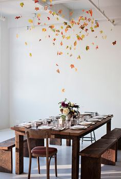 Leaves hanging from ceiling