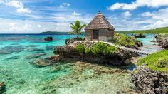 Want to go to here... The Loyalty Islands: A pristine paradise in New Caledonia