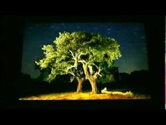 José Benito Ruiz: Composición en fotografía nocturna - YouTube