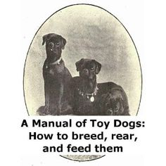 http://p-interest.in/redirector.php?p=B007OWPC7I  A Manual of Toy Dogs: How to breed, rear, and feed them (Illustrated) (Kindle Edition)