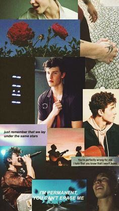 Read 🌻wallpaper Shawn mendes🌻 from the story ↳ᴘᴀᴄᴋꜱ↲ by mrvelnatural (* 𝓮𝓵 𝓶𝓪𝓻𝓲𝓪𝓬𝓱𝓮 *) with reads. Shawn Mendes Memes, Shawn Mendes Fofo, Shawn Mendes Imagines, Shawn Mendes Wallpaper, Shawn Mendes Lockscreen, Daddy, Mendes Army, Aesthetic Videos, Cute Love