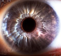 Up close photos of Human Eyes...reminds me of black holes
