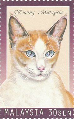 Malasia 1999 Sellos del gato - Kucing Malasia (gatos de Malasia)