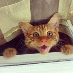 Heeey!  You're home early!