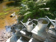 i saw the watering cans by themselves first. then i saw this. even more perfect. if perfection can be perfected...