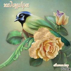 Greek Language, Beautiful Roses, Good Morning, Collage, Animation, Creative, Flowers, Painting, Image