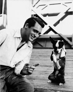 """Cary Grant, Dog says, """"Uhhhh. It's Cary Grant.but it's Cary Grant! Golden Age Of Hollywood, Vintage Hollywood, Hollywood Stars, Classic Hollywood, Hollywood Men, Hollywood Party, Hollywood Icons, Hollywood Glamour, Cary Grant"""