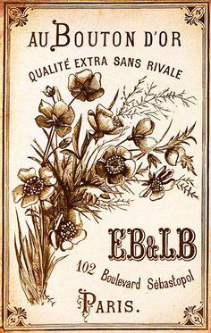 E.B.& L.B, Au bouton d'or. (BM Lille / 43662-354)