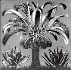 escher art   Escher // Palm, c.1933 Art Print