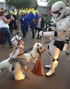 Star Wars : ce cosplay de Tauntaun vous fera craquer - Star Wars Cosplay - Star Wars Cosplay news - - Star Wars Meme, Star Wars Quotes, Star Trek, Costume Star Wars, Disfraz Star Wars, Star Wars Memorabilia, Star Wars Personajes, Baby Kostüm, Star Wars Wallpaper